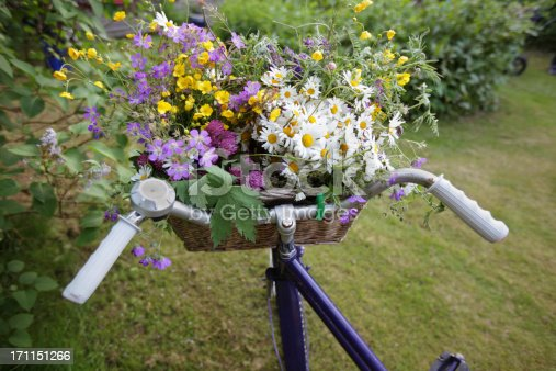 An assortment of Swedish wild Spring flowers collected in a bicycle basket.