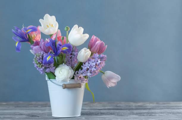 vårblommor i hink på blå bakgrund - flower bouquet blue and white bildbanksfoton och bilder
