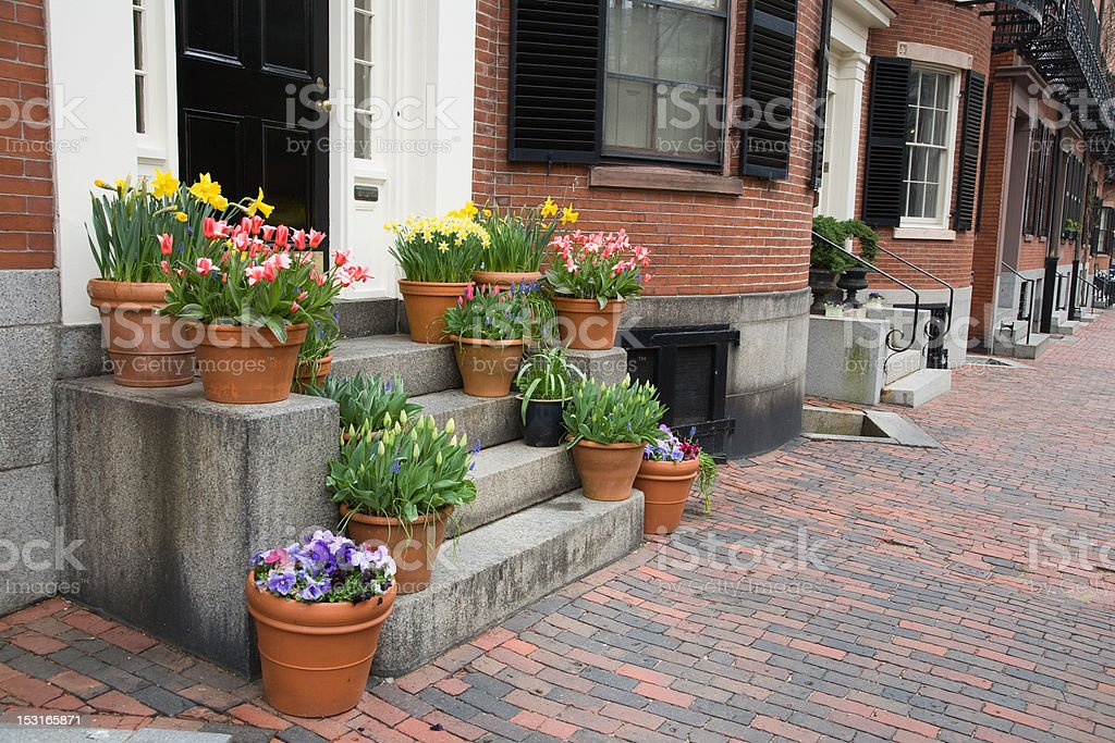 Spring Flowers In The City royalty-free stock photo