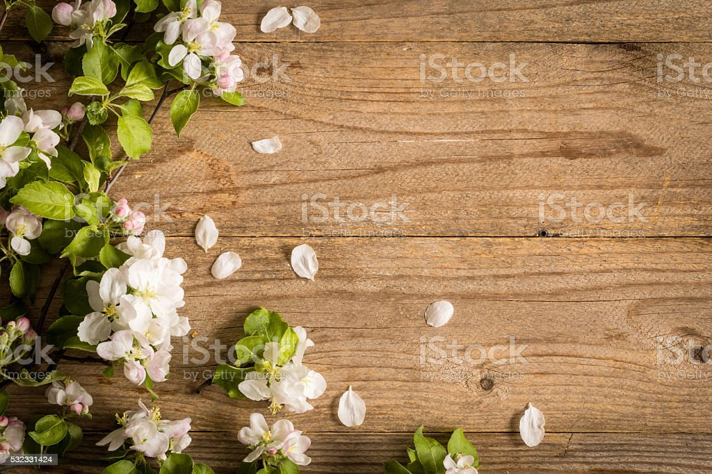 Spring flowers on wooden background with copy space stock photo