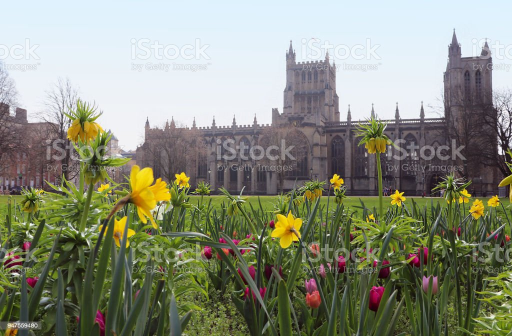 Spring flowers overlooking bristol cathedral uk stock photo more spring flowers overlooking bristol cathedral uk royalty free stock photo mightylinksfo