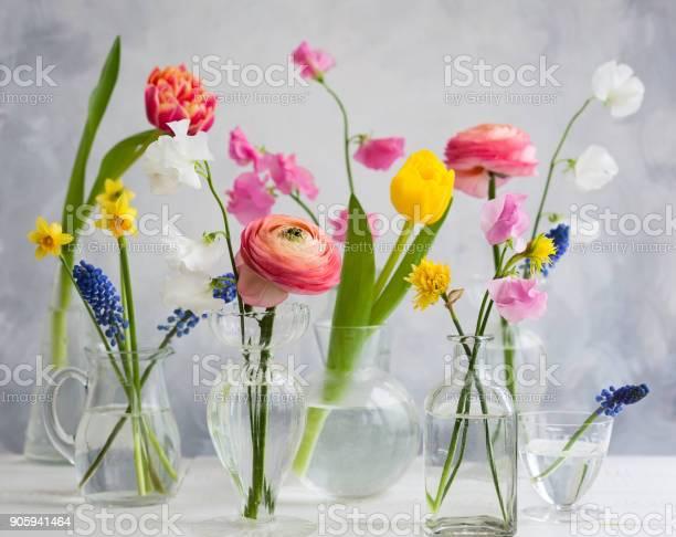 Spring flowers picture id905941464?b=1&k=6&m=905941464&s=612x612&h=7sfkqamg3zunzq3uxt6xmnudw50jd4u5anc9im4gyqu=