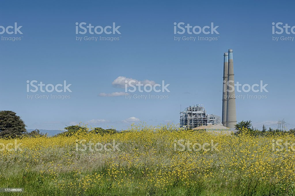 Spring Flowers With Cooling Towers in Background royalty-free stock photo