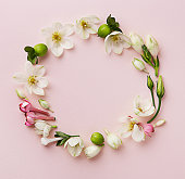 Spring flowers wreath on a pink pastel background viewed from above. Top view. Copy space.