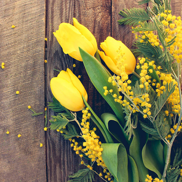 spring flowers: yellow tulips, mimosa on old wood background - immagini mimosa 8 marzo foto e immagini stock