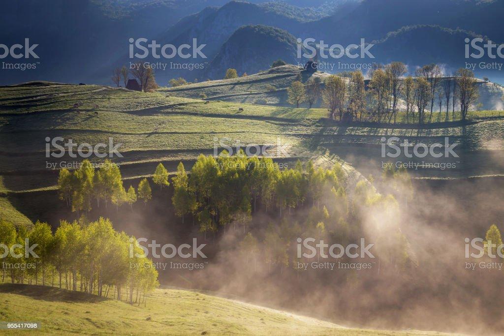 Spring foggy morning above Aries Valley, Apuseni Mountains - Zbiór zdjęć royalty-free (Bez ludzi)