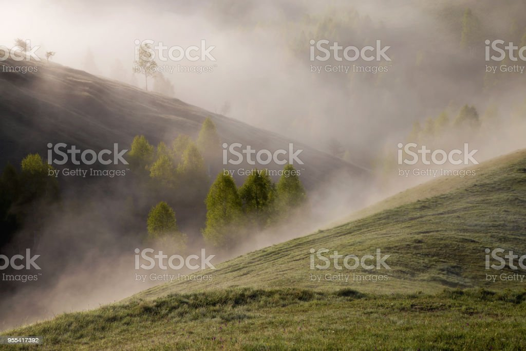 Spring foggy morning above Aries Valley, Apuseni Mountains - Zbiór zdjęć royalty-free (Bez ludzi)