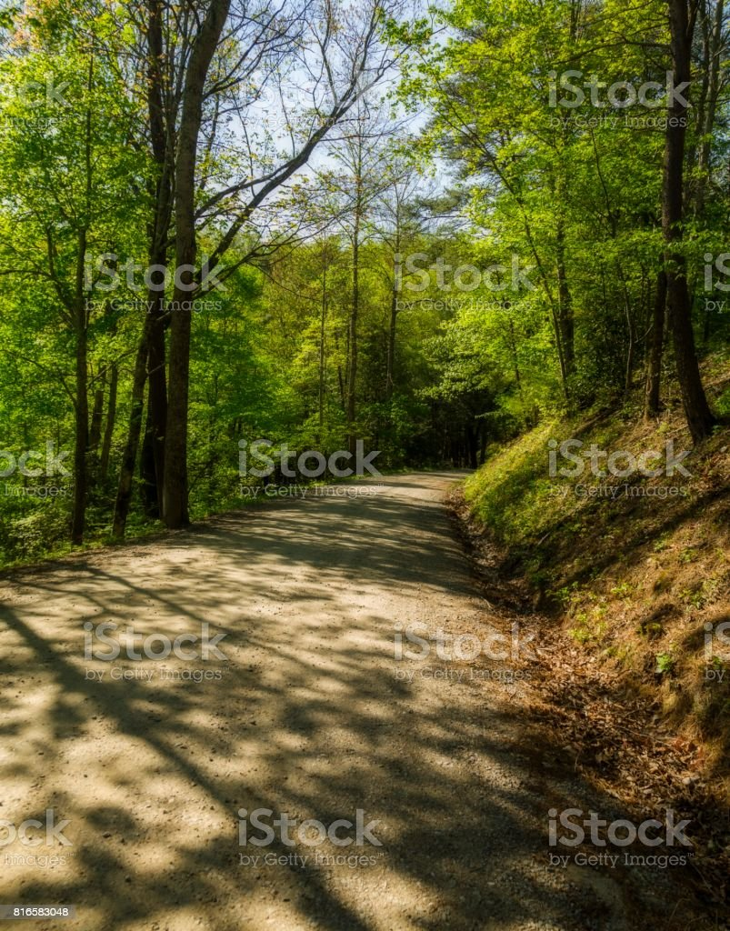Spring Foliage, from Hwy 32, NC stock photo