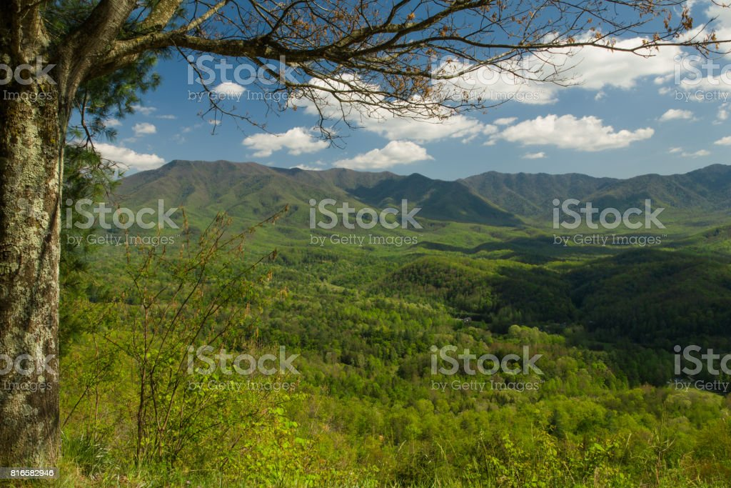Spring, Foothills Parkway stock photo