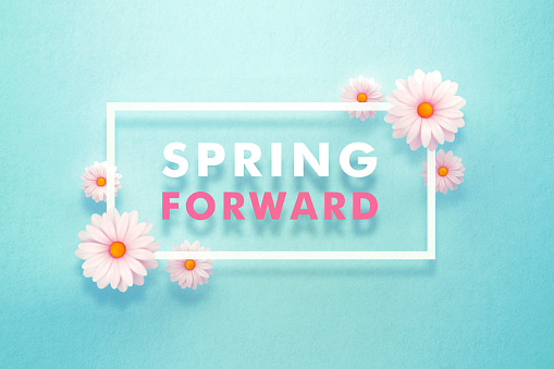 Spring forward message surrounded by daisies over teal background. Horizontal composition with copy space. Spring forward and daylight saving time concept.