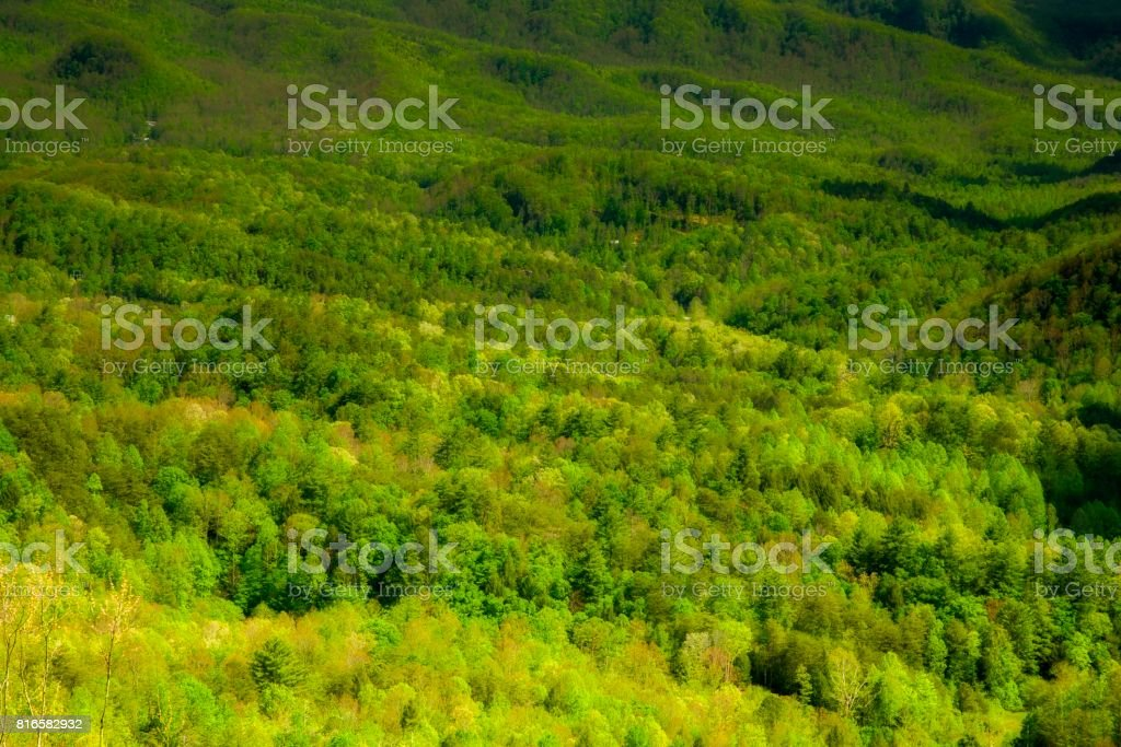Spring, from Foothills Parkway stock photo