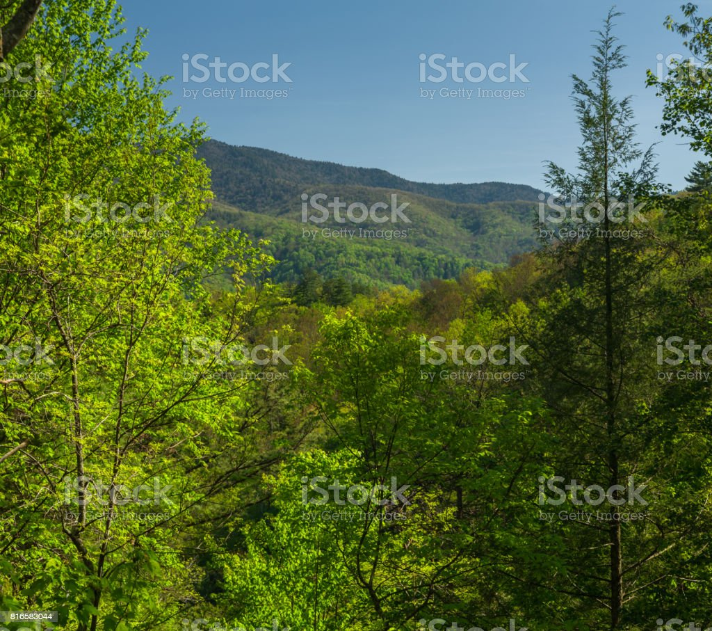 Spring, from Foothills Parkway, TN stock photo