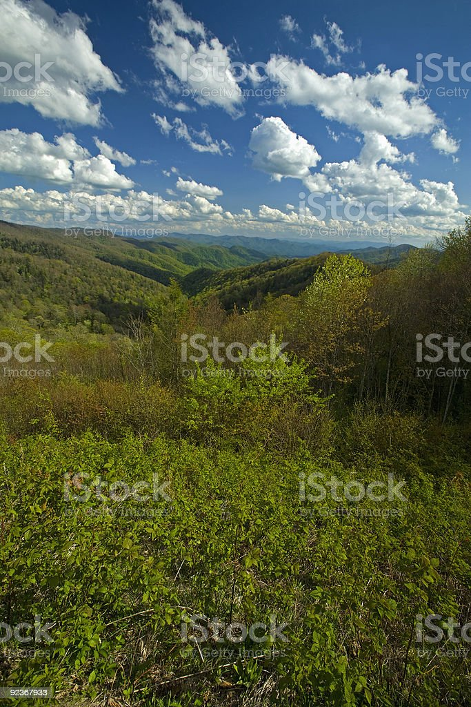 Spring from Newfound Gap Rd, Great Smoky Mtns NP, TN-NC stock photo