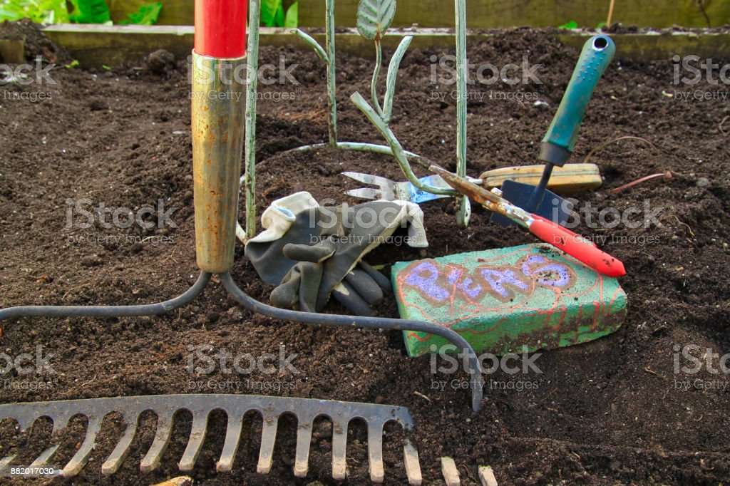 Spring Garden in setup in yard, with tools in raised bed. stock photo