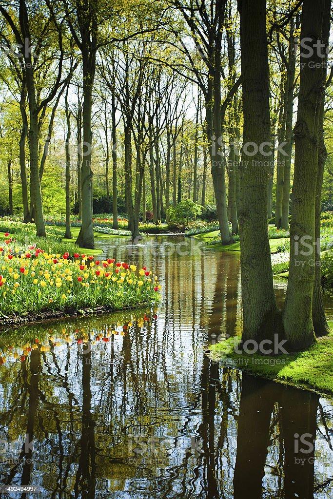 Frühling Garten und Landschaft – Foto
