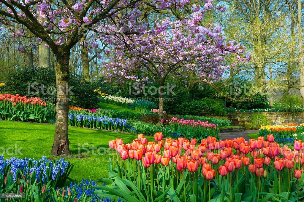 Spring Garden stock photo