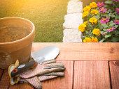 istock Spring Gardening 521976436