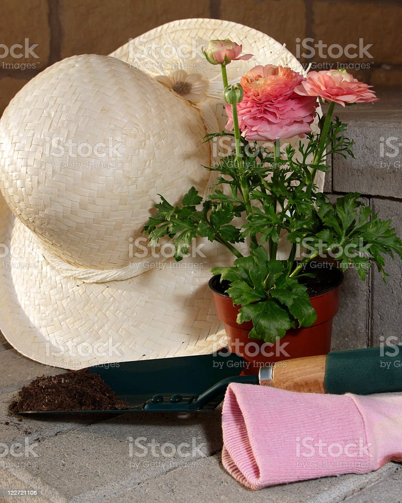 Spring gardening, plant, garden tool with soil and straw hat royalty-free stock photo