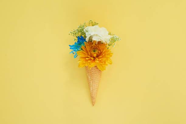 spring has sprung - foto di ice cream foto e immagini stock