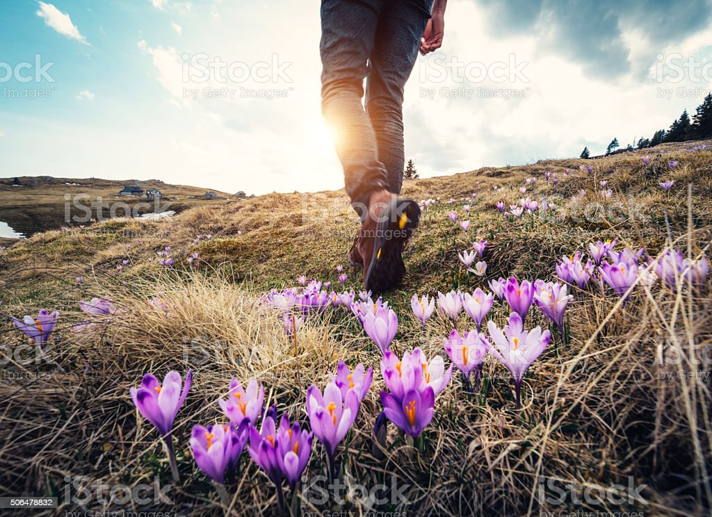 Spring Hiking stock photo