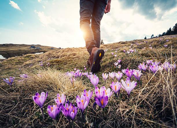 spring hiking - jogging hill bildbanksfoton och bilder