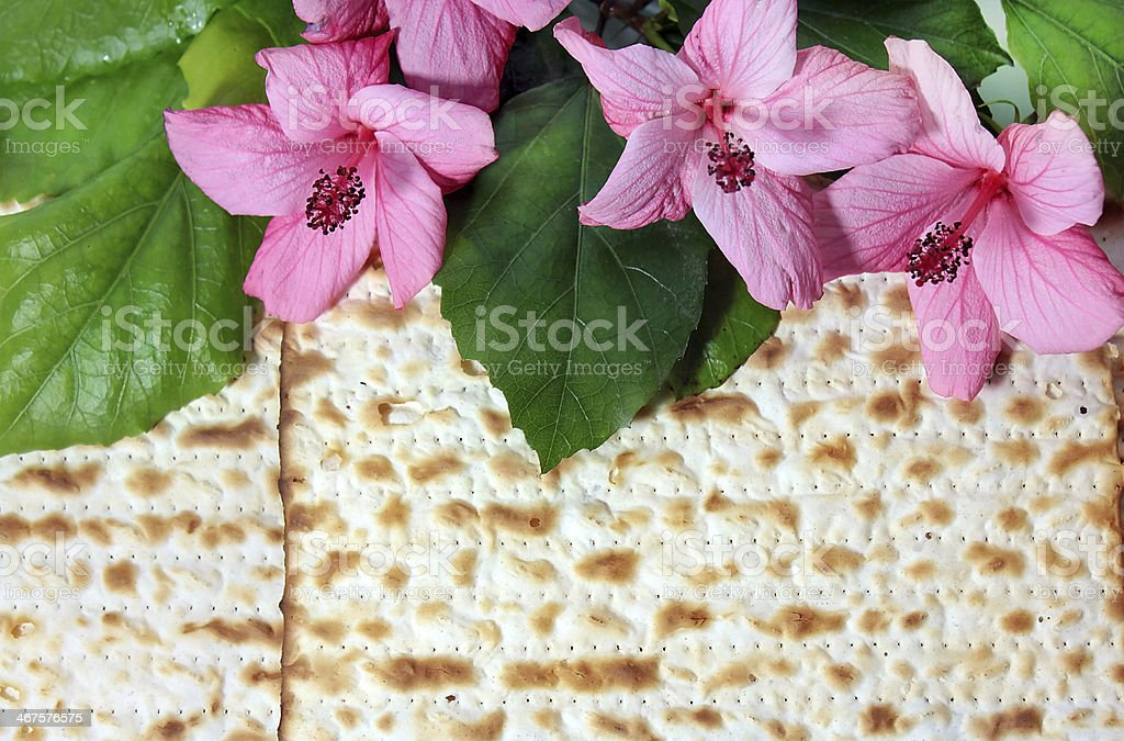 spring holiday of Passover stock photo