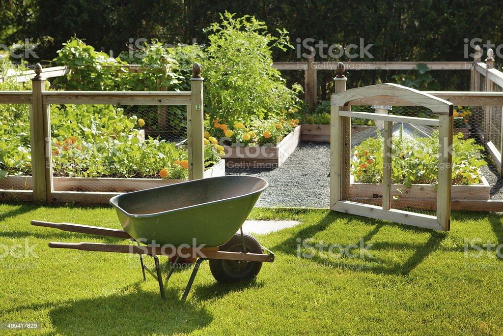 Spring Home Garden with Flowers and Vegetables Featuring Wheelbarrow, Fence stock photo