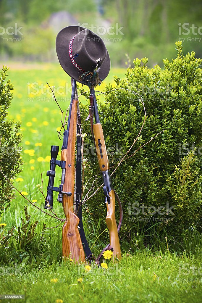 Spring hunting royalty-free stock photo