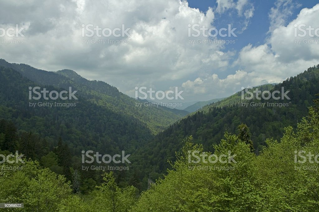 Spring Image, Great Smoky Mountains NP, TN royalty-free stock photo