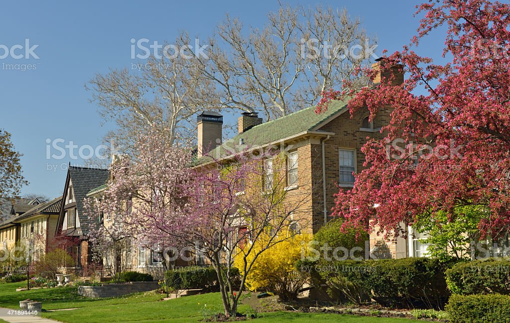Spring in a city, USA stock photo