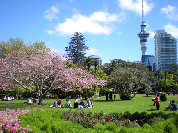 Spring in Albert Park stock photo