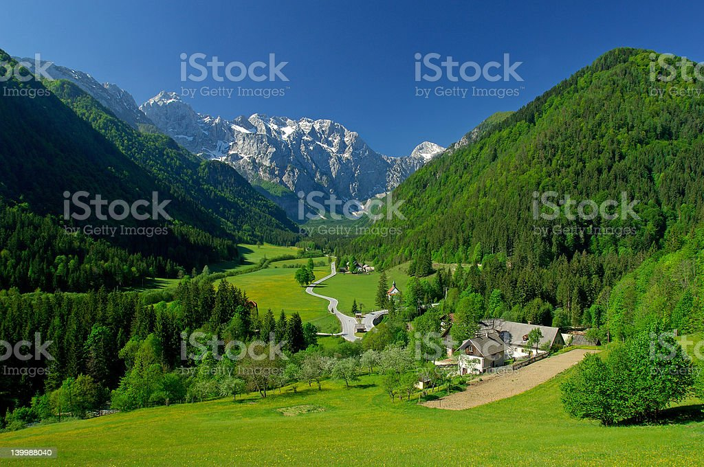 Spring in alpine valley stock photo
