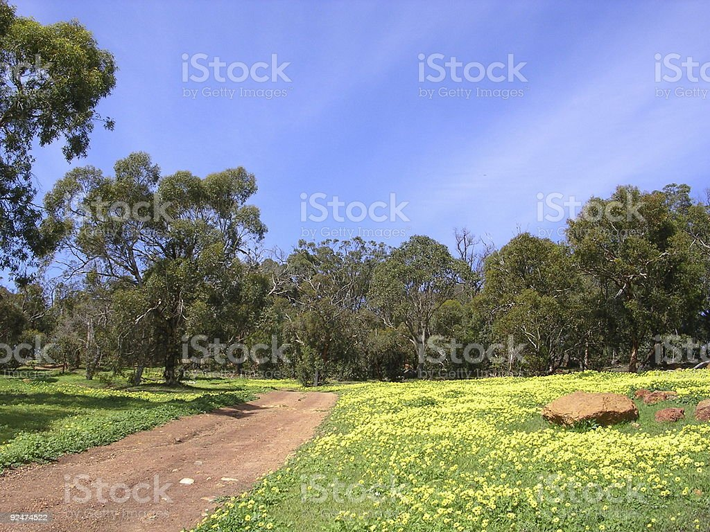 Spring in Brigadoon royalty-free stock photo