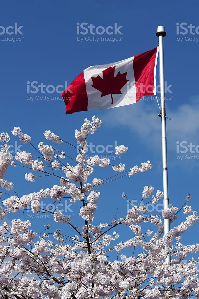 Spring in Canada royalty-free stock photo