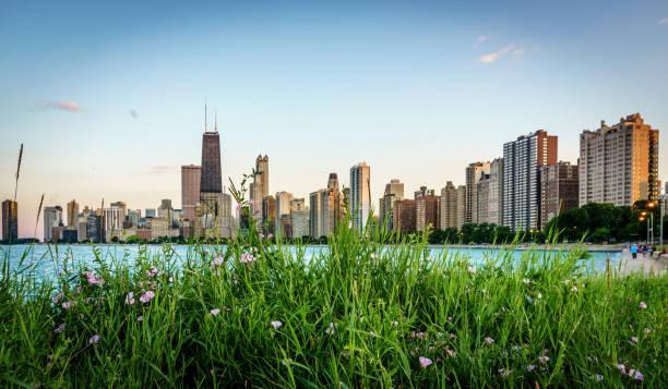 spring in chicago - chicago illinois fotografías e imágenes de stock