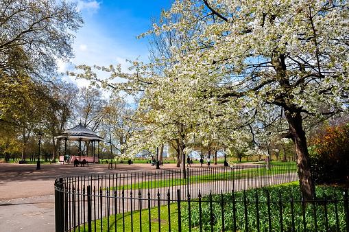 Spring in Hyde park, London, UK
