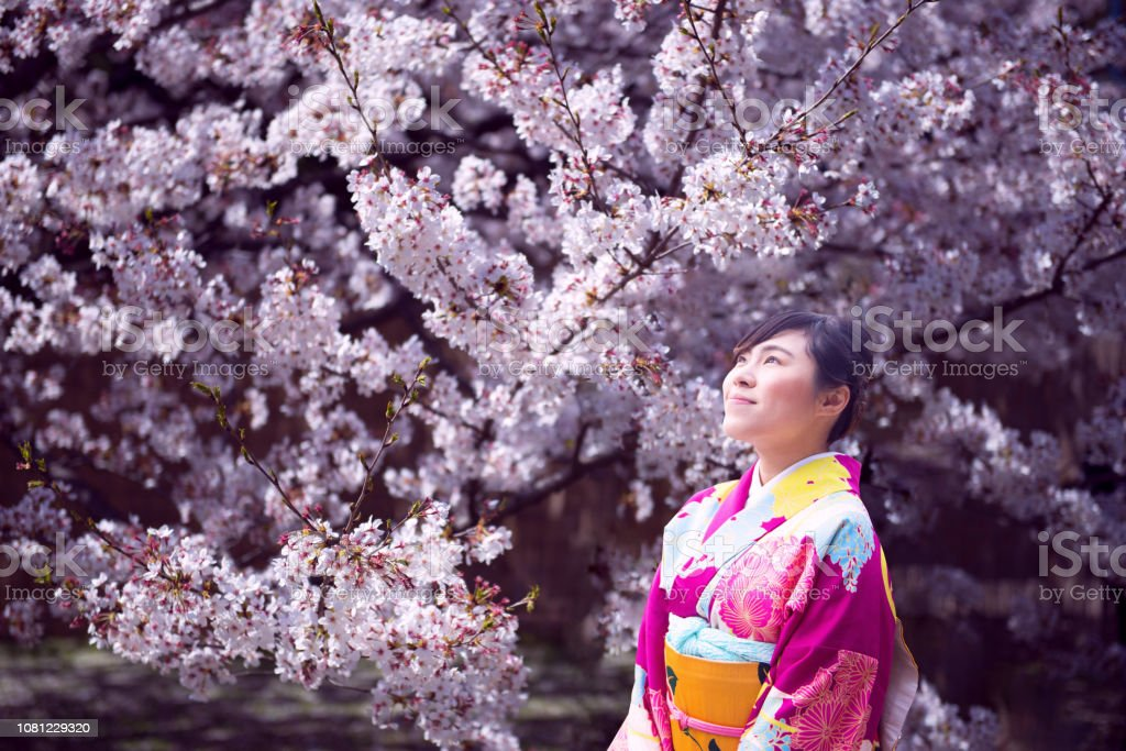 Frühling in Japan. – Foto