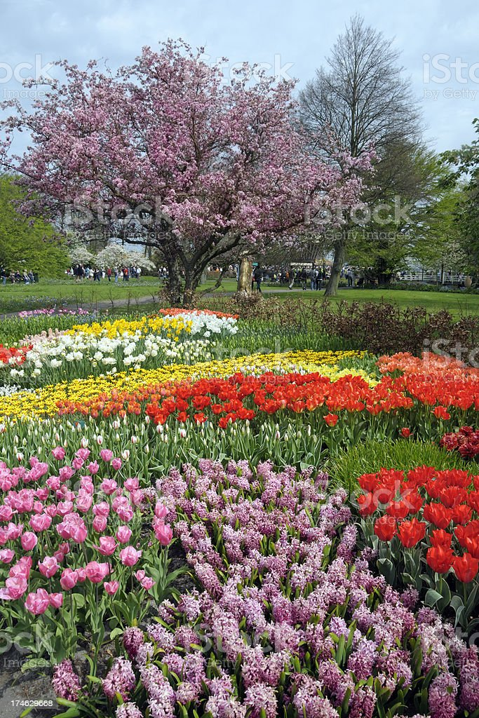 Spring in Keukenhof Gardens royalty-free stock photo