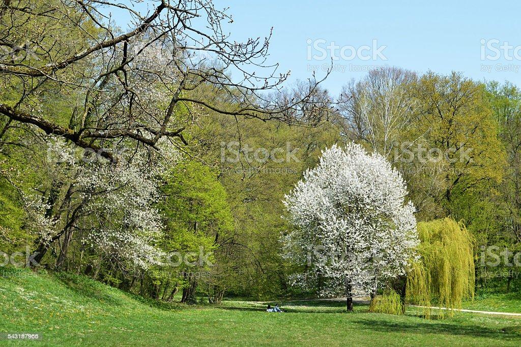 Spring in Maksimir park, Zagreb, Croatia stock photo