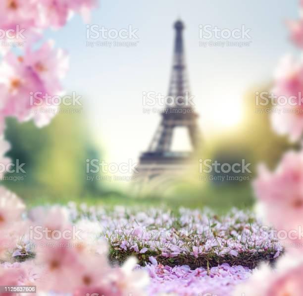 Spring in paris picture id1125637606?b=1&k=6&m=1125637606&s=612x612&h=cipyhzdppvdr0zm5hvqtyukhzc7hjxpnt leakzekgo=
