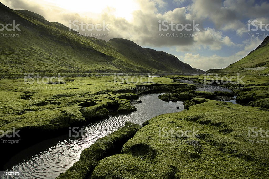 Spring in Scotland Valley stock photo