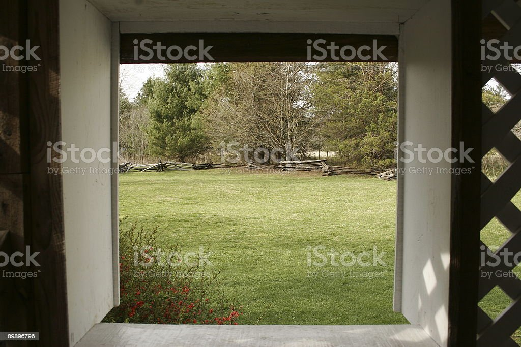 Spring in the backyard royalty-free stock photo