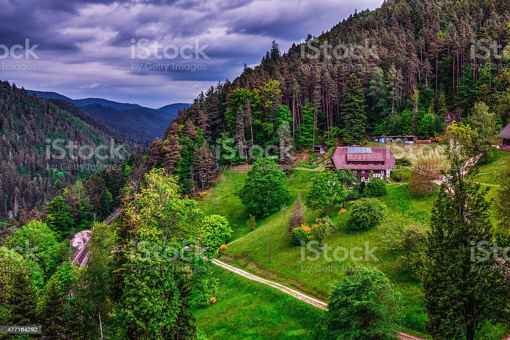 Spring in the Black Forest stock photo
