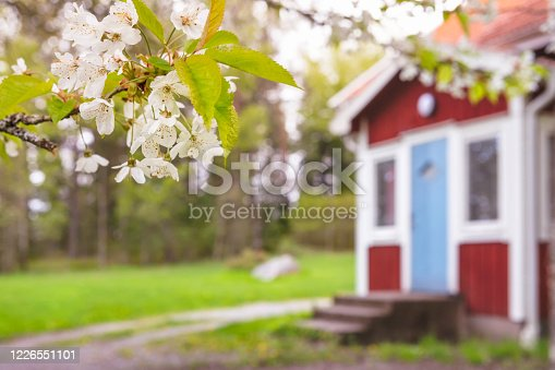 istock Spring in the countryside 1226551101