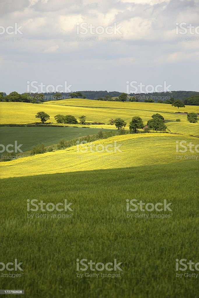 Spring in the English countryside stock photo