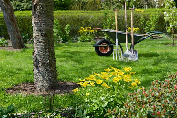 spring in the garden - kruiwagen met gereedschap stockfoto's en -beelden