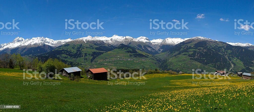 Spring in the Mountains (XL) stock photo