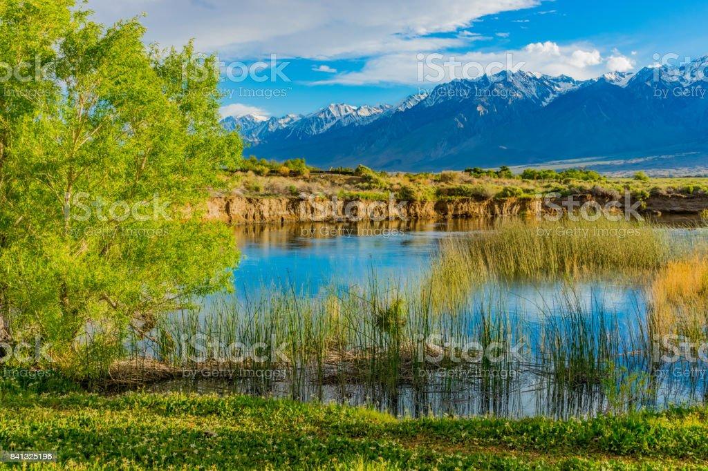 Primavera en el valle del río Owens con California Sierra Nevada Condado de Inyo, CA(P) - foto de stock