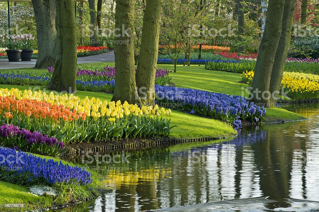 Spring in the Park stock photo
