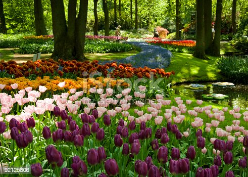 istock Spring in the park 92125806